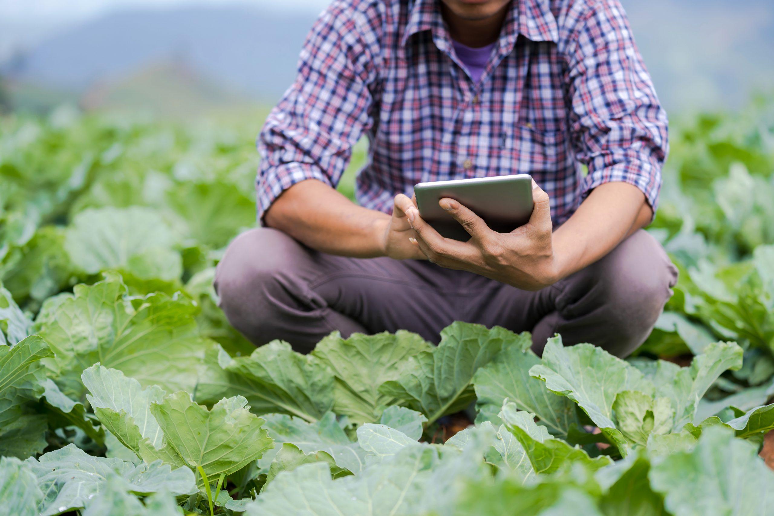 Farm connectivity;
