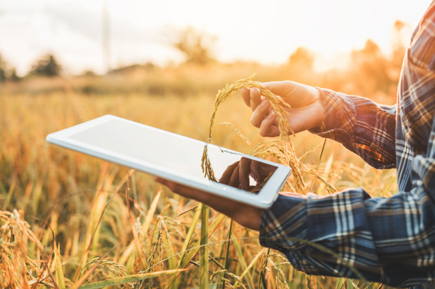 Choosing the right connectivity option for your farm