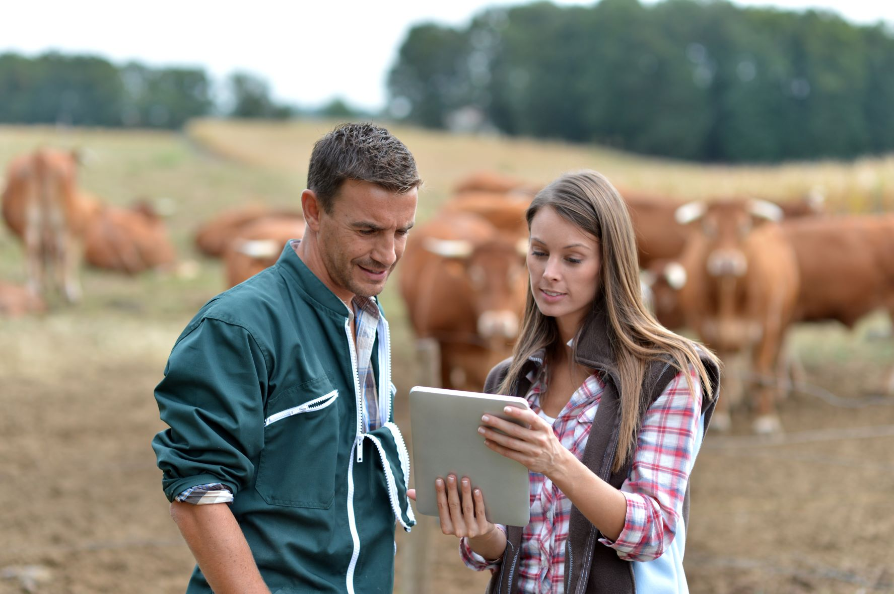 Creating a safe work environment for farmhands;